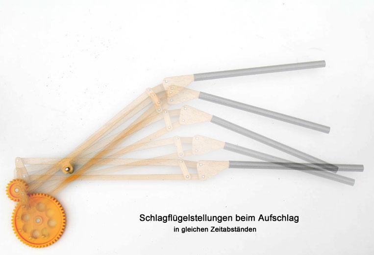 Wie Ornithopter fliegen - Andere Schlagflügelkonstruktionen